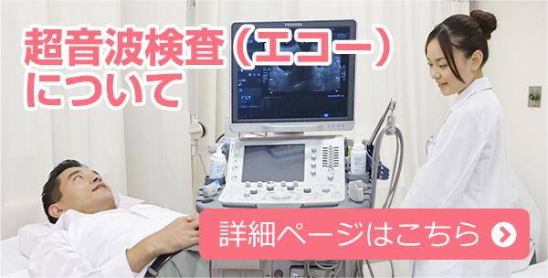 超音波検査(エコー)について